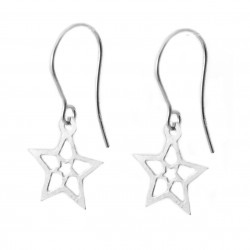 Silver earrings star